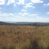 The view looking out over the African plains