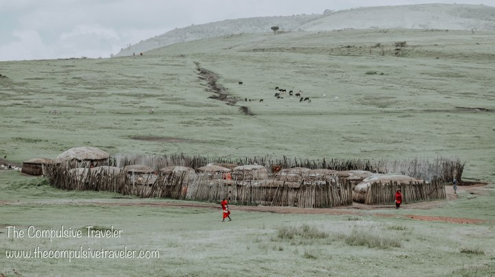 Tanzania: The Ngorongoro CraterEdition.